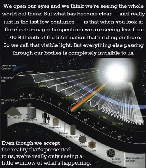 lightwavelength – Prepare for Change